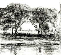 Baum, Ufer, Zeichnungen