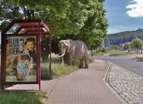 Haltestelle, Elefant, Werbung, Fotografie