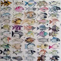 Fische, Zeichnungen