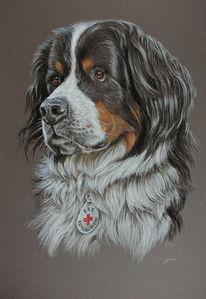 Hund, Portrait, Dogpicture, Animalpainting