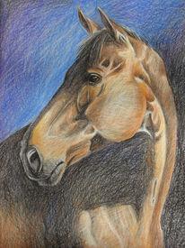 Pastellmalerei, Zeichnung, Pferde, Goldbraun
