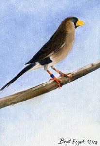 Vogel, Maskenamadine, Ölmalerei, Figural