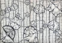 Zeichnung, Bleistiftzeichnung, Physalis, Ananas