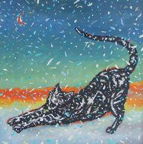 Schnee, Abstrakt, Katze, Show