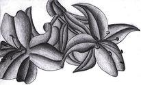 Zeichnungen, Abstrakt, Flora