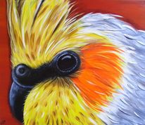 Acrylmalerei, Vogelkopf, Feder, Nymphensittich