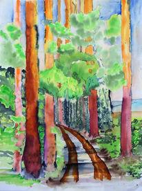 Maigrün, Unterholz, Mittelgebirge, Kiefernwald