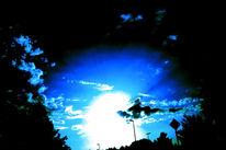 Sonne, Baum, Verkehrsinsel, Licht