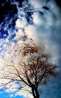 Holz, Licht, Kalt, Himmel