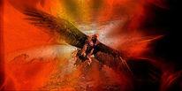 Feuer, Flügel, Kopf, Himmel