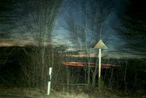 Straße, Baum, Wolken, Pflanzen