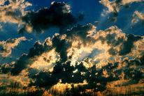 Wolken, Pflanzen, Fotografie, Morgen