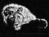 Großkatze, Tiere, Löwe, Kreide