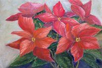 Pflanzen, Weihnachten, Rot, Pastellmalerei