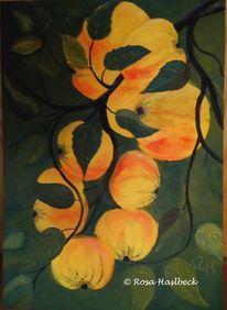 Baum, Gelb, Garten, Erntezeit