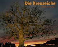 Monumentale bäume, Kreuzeiche, Hürbel am rangen, Sonnenuntergang