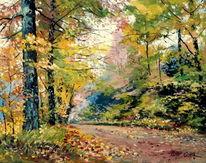Blätter, Wald, Farben, Herbst