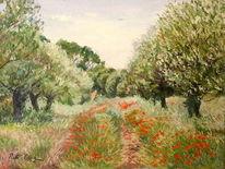 Wiese, Landschaft, Mohnblumen, Weiden