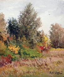 Wiese, Baum, Blumen, Gras