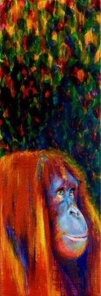 Affe, Urwald, Portrait, Orang utan