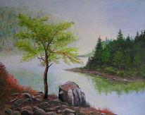 Insel, Stein, Wasser, Baum