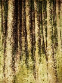 Tuschezeichnung, Wald, Baum, Eingang
