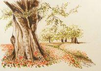 Tuschezeichnung, Skizze, Tusche, Baum