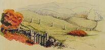 Tusche, Busch, Hügel, Federzeichnung