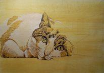 Tusche, Beobachter, Katze, Tierportrait