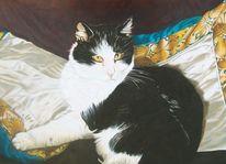 Gemütlichkeit, Muster, Katzenportrait, Kissen