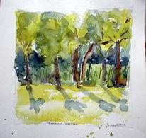 Baum, Divo, Schatten, Di vora anneliese