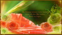 Traum, Digital, Mohnblüten, Schmetterling
