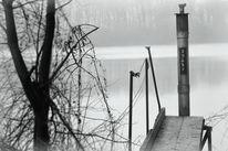 See, Gewässer, Natur, Grau