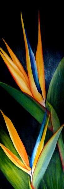 Blumen, Schwarz, Floral hochformat, Gelb