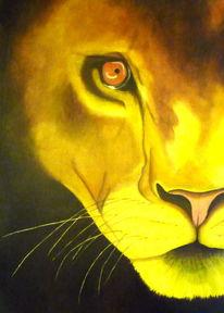 Tiere, Löwe, Fantasie, Afrika