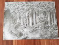 Baum, Wald, Hexe, Dunkel