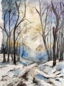 Schnee, Sonnenstrahlen, Wintertag, Waldweg