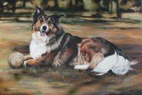 Hund, Collie, Hundeportrait, Malerei