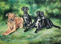 Hundegruppe, Hundeportraits, Hunde gemalt, Malerei