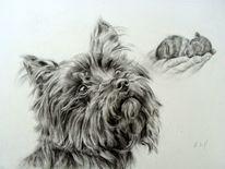 Hundeportrait, Hundezeichnung, Hund, Zeichnungen