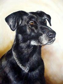 Hundeportrait, Hund, Tierportrait, Malerei