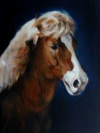 Isländer, Pferdemalerei, Pferdepoträt, Malerei