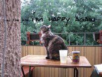 Balkon, Tiere, Katze, Fotografie