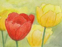 Tulpen, Aquarellmalerei, Blumen, Aquarell