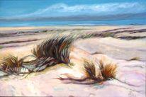 Wasser, Amrum, Gras, Strand