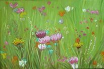 Wiese, Grün, Bunt, Blumenwiese