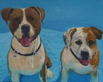 Weiß, Hund, Hellblau, Terrier