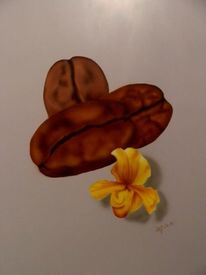 Kaffeebohnen, Blüte, Airbrush, Illustrationen