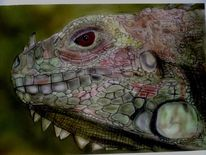 Malerei, Leguan