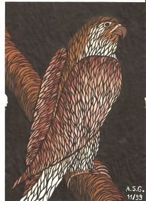Vogel, Temperamalerei, Greif, Schwarz weiß